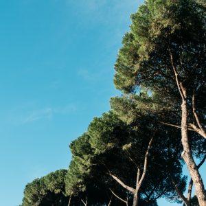 travel blogger italia explore