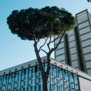 rome italy eur architecture explore fujifilm photography-17