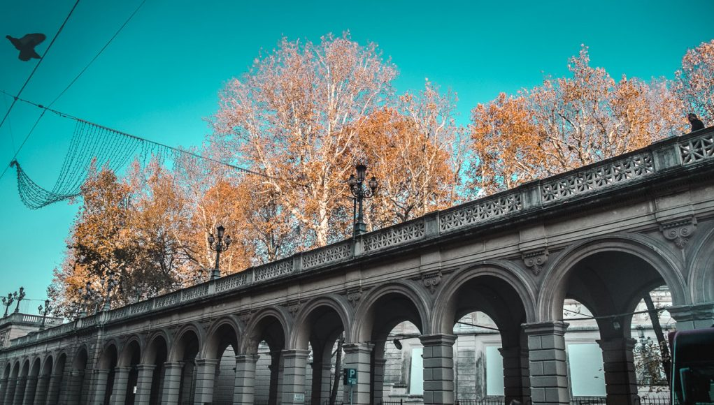 bologna art of visuals travel blogger italy-4
