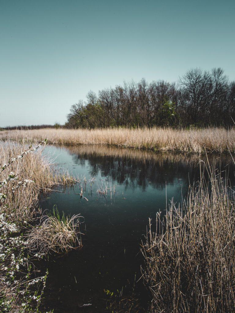 melitopol fishing nature