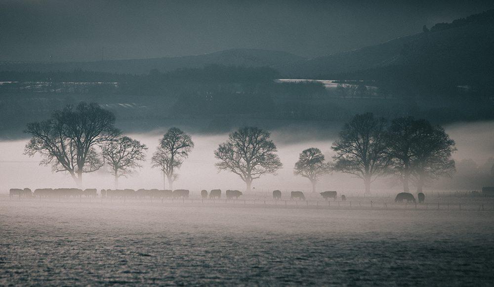 scotland isle of skye travel dvsn tesla