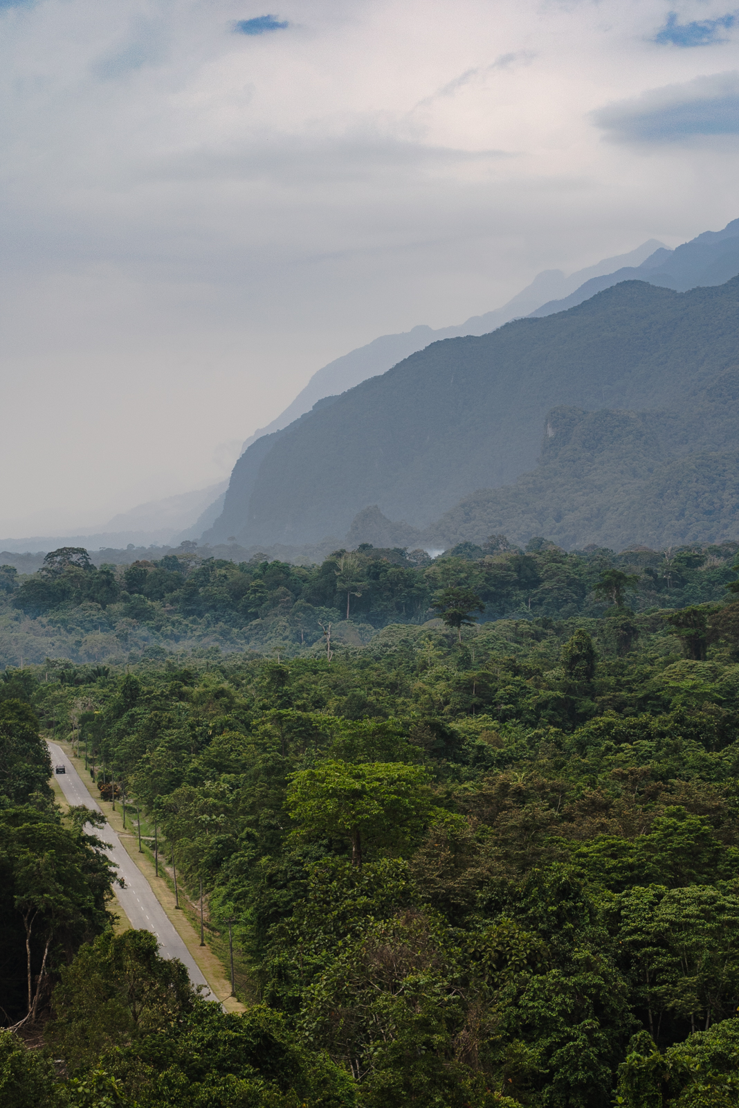 miri national park sarawak