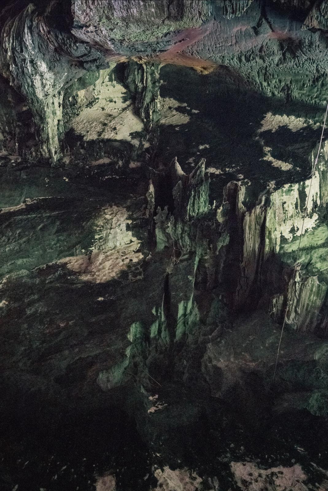mulu caves bat caves sarawak green alien